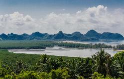 The coast and mangrove forest Royalty Free Stock Images
