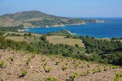 Coast Mediterranean sea France Pyrenees Orientales Royalty Free Stock Photo