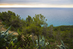 Coast of the Mediterranean Sea Royalty Free Stock Images