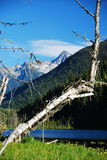 Coast mountains. And lake in canada british columbia royalty free stock image