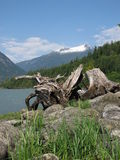 Coast mountains bella coola. Bella coolla mountains royalty free stock image