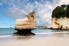 Coast near the Cathedral Cove Stock Photo