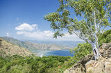Coast near dili east timor Stock Image