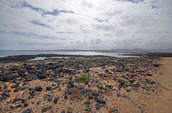 Coast near El Cotillo, Canary Island Fuerteventura, Spain Stock Images