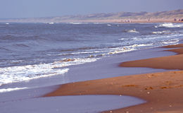 Coast of the North sea in Netherlands Stock Images
