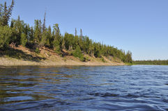 Coast Northern boreal river. Stock Images