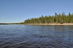 Coast Northern boreal river. Stock Photography