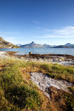 Coast Norway Royalty Free Stock Image