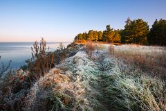 Night frost by the river. The Ob River, Siberia, Russia Stock Photography