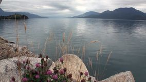 Coast of ocean and green mountain view from boat in Patagonia Argentina. stock footage