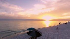 Coast Ocean USA, Florida stock video