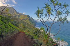 Coast off of Kauai of Hawaii Stock Photography