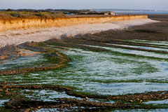 Coast of Oleron Island. In Poitou-Charentes, France stock image