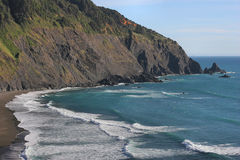 coast oregon Royaltyfri Fotografi