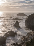 coast oregon Royaltyfria Bilder