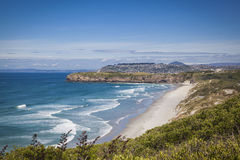 Coast of Otago New Zealand Royalty Free Stock Images