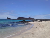 Coast of the Pacific. Galapagos Islands, Ecuador, South America Stock Photography