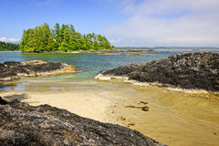 Coast of Pacific ocean, Vancouver Island, Canada Stock Images
