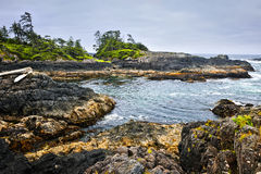 Coast of Pacific ocean, Vancouver Island, Canada Royalty Free Stock Image