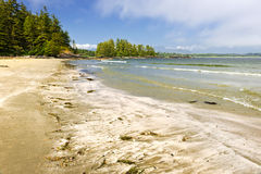 Coast of Pacific ocean, Vancouver Island, Canada Royalty Free Stock Images