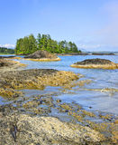 Coast of Pacific ocean, Vancouver Island, Canada Stock Photography