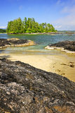 Coast of Pacific ocean, Vancouver Island, Canada Stock Image
