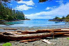 Coast of Pacific Rim National Park, Vancouver Island, BC, Canada. Blue water and skies along the coast of Pacific Rim National Park, Vancouver Island, BC, Canada Stock Images