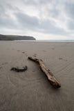 On the coast path Cornwall england uk Stock Photography