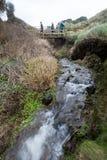 On the coast path Cornwall england uk Stock Image