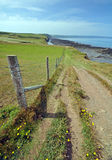 Coast path in North Devon Stock Photo
