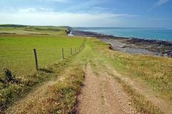 Coast path in North Devon Royalty Free Stock Photography