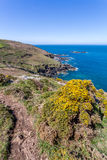 Coast path between zennor and st ives in cornwall england uk. In penwith Royalty Free Stock Photo