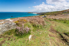 Coast path between zennor and st ives in cornwall england uk Stock Image
