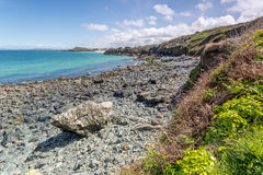 Coast path between zennor and st ives in cornwall england uk Royalty Free Stock Photos