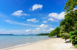 Coast of Phuket. Thailand, Tree in front view and background wit Stock Photo