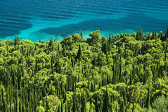 Coast with pines. Peninsula Orebic in Croatia by summer holiday Stock Photography