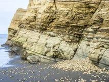 Coast at playa de sua in atacamas, equador. Rough coast at playa de sua in atacamas, equador Stock Images