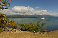 Coast at Port Douglas Queensland Royalty Free Stock Images