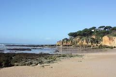 coast portugal Arkivfoto