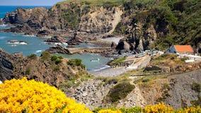 Coast portugal Stock Photography