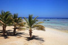 Coast of the red sea Royalty Free Stock Photography