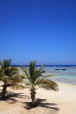 Coast of the red sea Royalty Free Stock Image