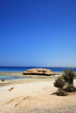 Coast of the red sea Royalty Free Stock Images