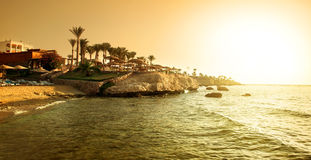 Coast of red sea Stock Image