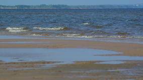 Coast of river willowwacks stock video