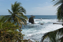 Coast with rock at Punta Manzanillo in Gandoca Manzanillo National Wildlife Refuge, Costa Rica.  Royalty Free Stock Image
