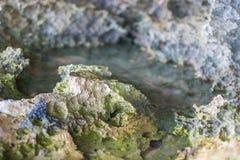 Sharp stones. Coast rock stones. Sharp rocks Royalty Free Stock Photos