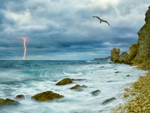 Coast from rocks and lightning on background. Seagull over ocean, comes nearer a thunder-storm towards the coast from rocks and lightning on background Stock Images
