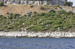 Coast Route of Thassos island in Greece. On a beautiful summer day stock photography