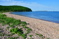 Coast of the Russkiy Russian, Russky island opposite the island of Shkot in spring sunny day. Vladivostok, Russia.  stock photos